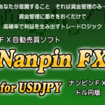 ナンピンFXドル円版小幡和枝