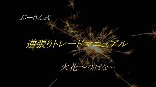 ぷーさん式FX 逆張りトレード 火花